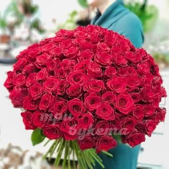 101 красная роза 70 см.