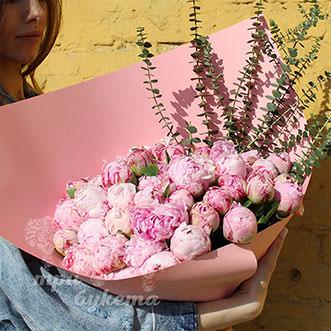 35 пионов Сара Бернар в лиловой Premium упаковке