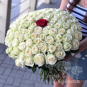 100 белых и 1 красная роза