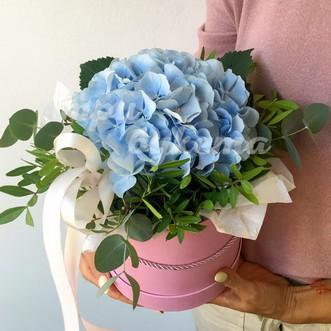 Синяя гортензия в шляпной коробке